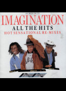 c1520 All The Hits: Hot Sensational Re-Mixes