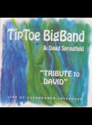 c2478 TipToe BigBand & David Springfield: Tribute To David