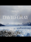 c3581 David Gray: Life In Slow Motion