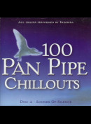 c4410 Inishkea: 100 Pan Pipe Chillouts