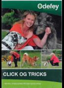 Click Og Tricks - Mental Stimulering På Den Sjove Måde