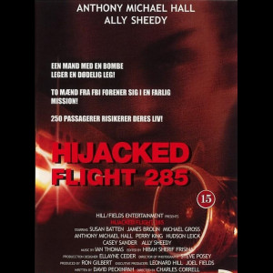 u4426 Hijacked Flight 285 (UDEN COVER)