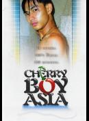 5919 Cherry Boy Asia