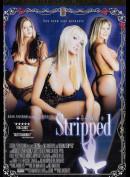 11045o DP: Devon Stripped