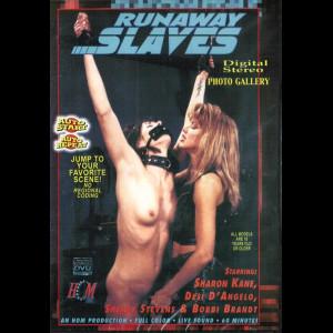 7561 Runaway Slaves