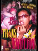 243 Transemotion