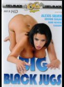 11075i Big Black Jugs