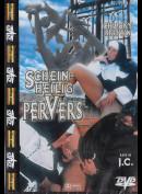 11511 Scheinheilig Pervers