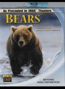 -7566 Bears