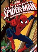Ultimate Spiderman: Avenging Spiderman