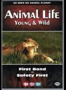 Animal Life - Episode 4 & 5