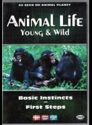 Animal Life - Episode 10 & 11