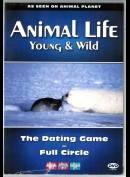 Animal Life Episode 12 & 13