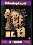 1141 Amatørsex nr. 13