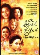 Biernes Hemmelige Liv (The Secret Life Of Bees)