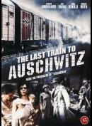 Det Sidste Tog Til Auschwitz