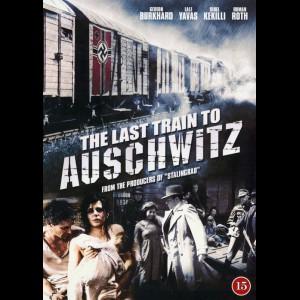 Det Sidste Tog Til Auschwitz (Der Letzte Zug)