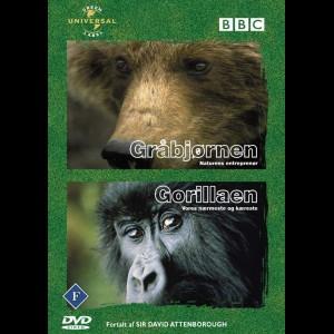 BBC: Gråbjørnen + Gorillaen (Wildlife 1)