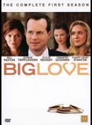 Big Love: Sæson 1