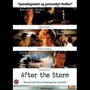 u5503 After The Storm (UDEN COVER)