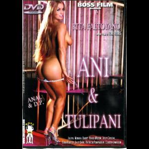 27 Ani & Tulipani