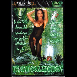 251 Transcollection