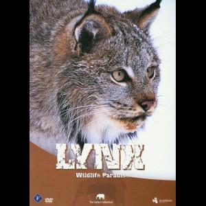 Lynx (Wildlife Paradise)