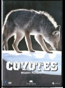 Wildlife Paradise: Coyotes