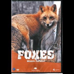 Foxes (Wildlife Paradise)