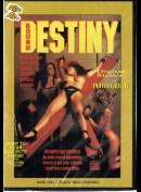 7553 Bound Destiny
