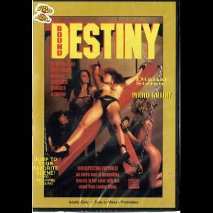 7554 Bound Destiny
