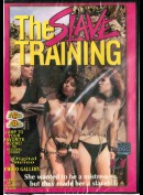7581 The Slave Training