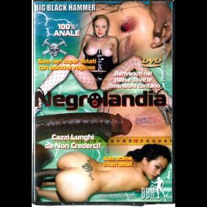 455 Negrolandia