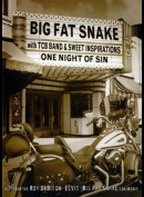 Big Fat Snake With Tcb Band & Sweet Inspirations: One Night Of S
