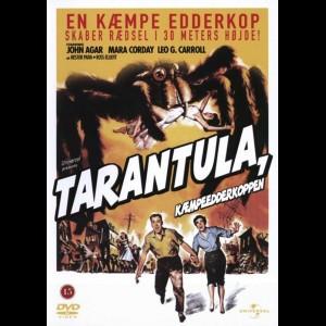 Tarantula: Kæmpeedderkoppen (1955) (Tarantula)