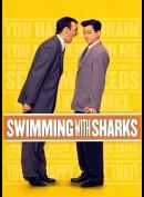 -1233 Swimming With Sharks (KUN ENGELSKE UNDERTEKSTER)