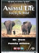 Animal Life - Young & Wild 3