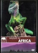 Safari: Wildlife In Africa