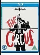 Charlie Chaplin: Cirkus [BD+DVD]