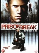 Prison Break: Sæson 1