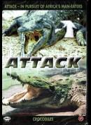 Attack: Crocodiles
