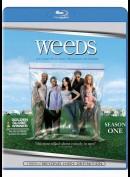 Weeds: sæson 1
