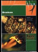 Killer Instinct: Snakes