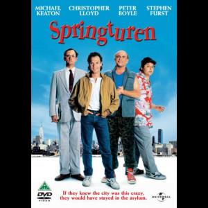 The Dream (Team Springturen)