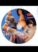s220 Matrimonial Interest (UDEN COVER)