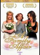 u11791 A Family Affair (Helen Lesnick) (Ingen Undertekster) (UDEN COVER)