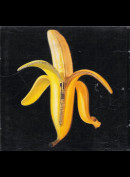 The Dandy Warhols: Welcome To The Monkey House