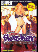 4511 Flasher