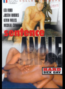 4646 Sentence Anale