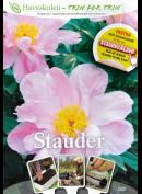 Stauder (Haveskolen)